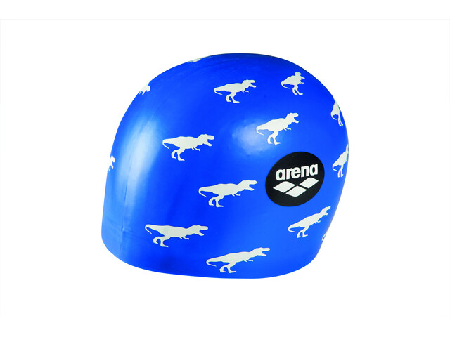 arena Poolish Moulded Casquette, dino blue